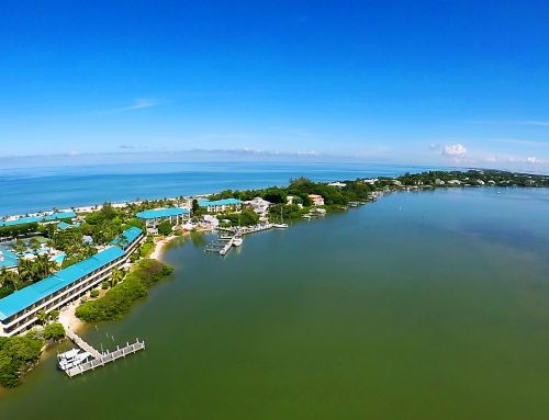 Welcome to the Beautiful Waters of Sanibel and Captiva
